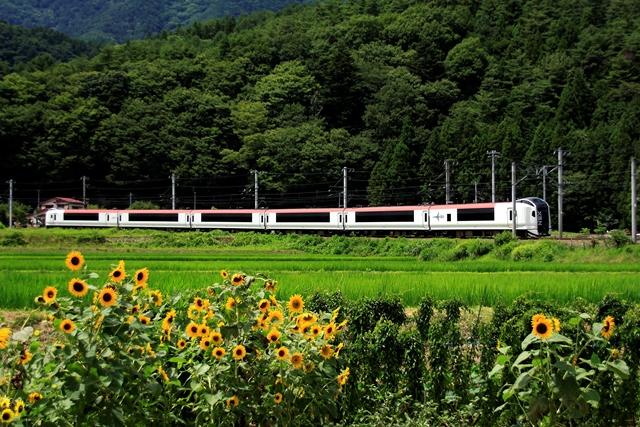 成田空港から山梨まで乗換なし!この夏は山梨へこぉーし。